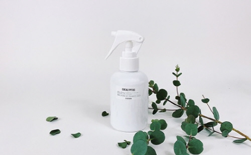 EUCALYPTUS HOME SPRAY