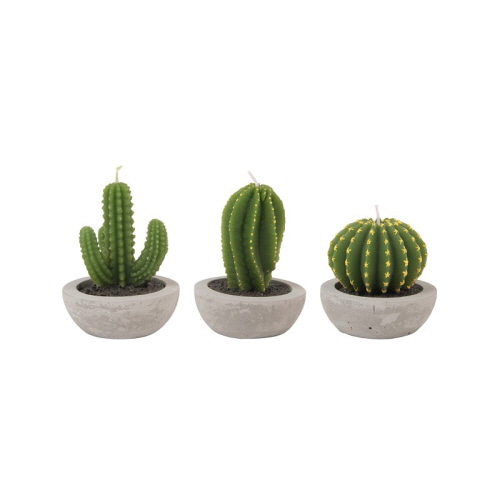 [앤클레버링] CACTUS CANDLE - SET OF 3